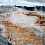 095 Yellowstone 32