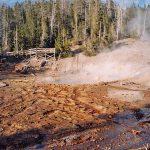 095 Yellowstone 43