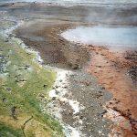 095 Yellowstone 51