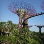 20150228-Gardens at the bay 01