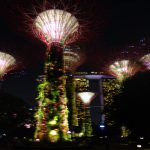 20150228-Gardens at the bay 14